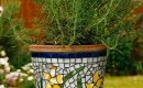 Glass mosaic plant pot.